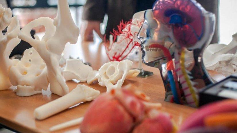 A PTE 3D Projekt nyerte el 2018-ban a Made in Pécs Közönségdíját